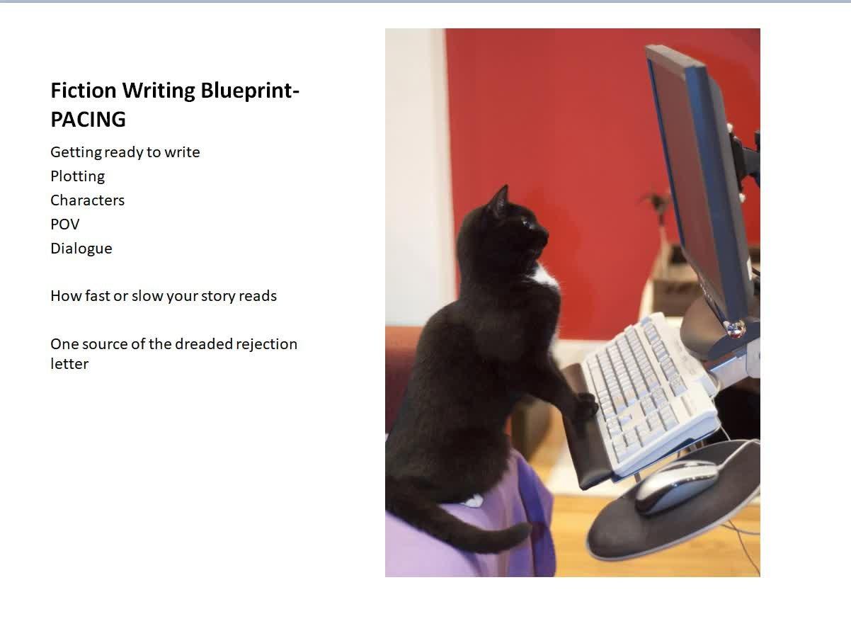 Novel Writing Blueprint-Pacing Your Story